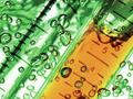 Herausforderungen im Bioprozess