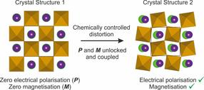 material with both magnetisation and electrical polarisation