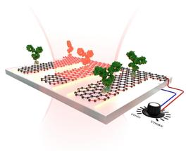 A graphene-based sensor that is tunable and highly sensitive