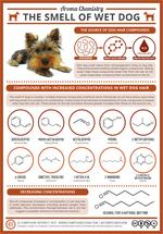 The Chemistry Behind the Smell of Wet Dogs