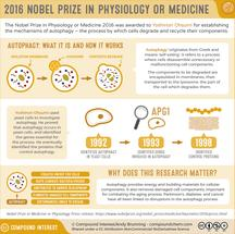Nobel Prize in Physiology or Medicine 2016