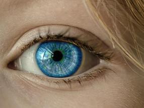 Catalizadores que imitan a nuestra retina