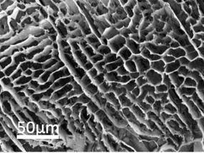Boron nitride foam soaks up carbon dioxide