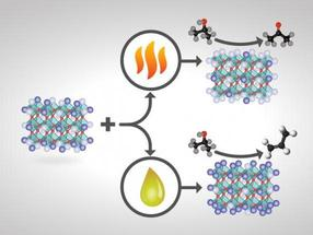 Customized catalysts to boost product yields, decrease separation costs