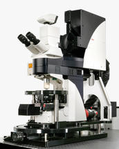 Leica-Elektrophysiologie-Abb2